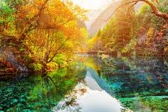 五Flower湖 在水反映的五颜六色的秋天森林 库存图片