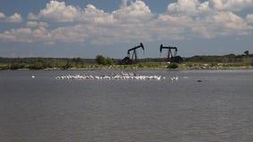井架在hagerman湖的Texoma野生生物保护区 影视素材