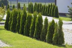 井维护了有小石头、树篱和绿色草坪道路的规则式园林  免版税库存照片