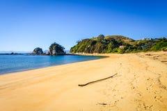 亚伯国家新的公园tasman西兰 库存图片
