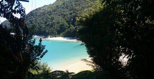 亚伯国家新的公园tasman西兰 免版税库存图片