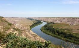 亚伯大加拿大鹿红河 免版税库存图片