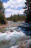 亚伯大加拿大Lake Louise村庄 图库摄影