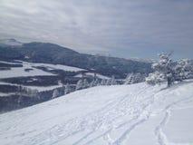亚伯大山麓小丘在冬天 库存照片