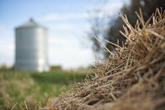 亚伯大或大草原与筒仓和干草的农田 库存图片