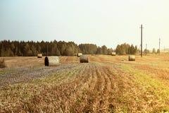 亚伯大打包域干草横向大草原农村夏令时 与蓝天和输电线的农业领域 农村自然在农场土地 在草甸的秸杆 库存照片