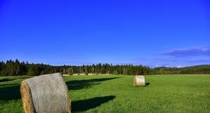 亚伯大打包域干草横向大草原农村夏令时 免版税库存照片
