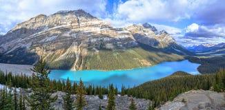 亚伯大banff加拿大湖找出国家公园peyto 免版税库存图片
