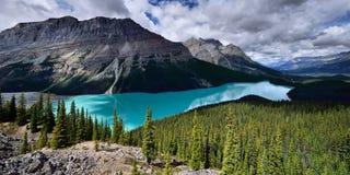 亚伯大banff加拿大湖找出国家公园peyto 库存图片