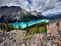 亚伯大banff加拿大湖找出国家公园peyto 免版税库存照片