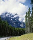 亚伯大banff加拿大级联有薄雾的山场面 库存图片