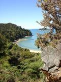 亚伯海湾国家公园tasman tinline 免版税库存图片