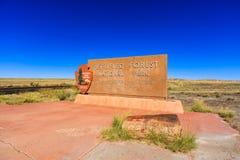 亚利桑那化石森林 库存图片