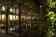 亚利桑那商城圣诞树和被点燃的棕榈树 免版税库存图片