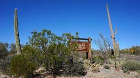 亚利桑那地面蛇沙漠博物馆 免版税库存照片
