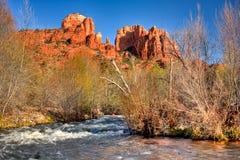 亚利桑那大教堂小河橡木岩石sedona 库存照片