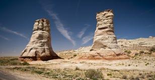 亚利桑那大象英尺石头 免版税库存图片