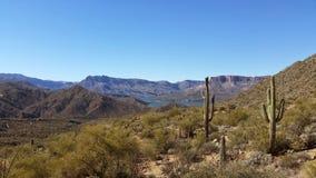 亚利桑那山和仙人掌 免版税库存照片