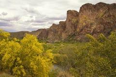亚利桑那山临近Saguaro湖 免版税图库摄影