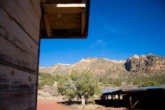 亚利桑那峡谷美国梧桐 图库摄影