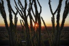 亚利桑那横向日落 库存图片