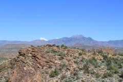 亚利桑那沙漠场面 库存图片