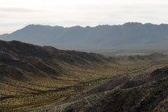 亚利桑那沙漠山 免版税库存图片