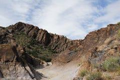 亚利桑那沙漠春天5 库存图片