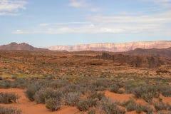 亚利桑那沙漠横向 库存图片