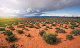 亚利桑那沙漠风暴Aproaching 免版税库存照片