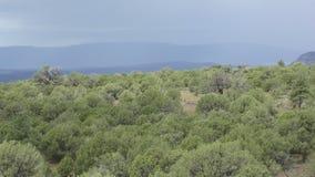 从亚利桑那的山风景 股票视频
