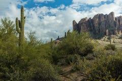 亚利桑那的沙漠风景的不同的秀丽 图库摄影