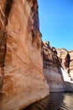 亚利桑那科罗拉多马掌河美国 arizonian 美国 免版税库存图片