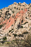 亚利桑那红色岩石 免版税库存照片
