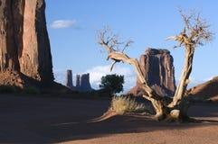 亚利桑那纪念碑北部谷视窗 库存照片