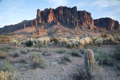 亚利桑那荷兰男人失去的公园s状态 免版税图库摄影