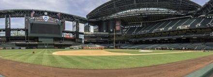亚利桑那菱纹背响尾蛇追逐领域棒球场 库存照片