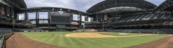 亚利桑那菱纹背响尾蛇追逐领域棒球场 库存图片
