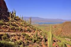 亚利桑那风景 库存照片