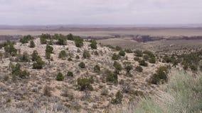 亚利桑那,一点科罗拉多峡谷,横跨小的科罗拉多的A平底锅从远方狼吞虎咽 股票视频