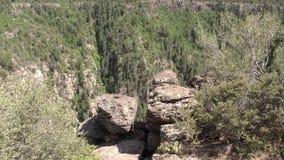 亚利桑那,橡木小河峡谷, A宽视图橡木与大岩石的小河峡谷在前景 股票录像