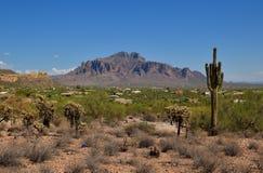 亚利桑那,阿帕奇章克申:迷信山山麓小丘的城市  免版税库存图片