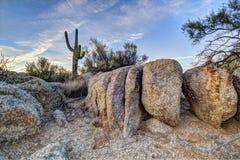 亚利桑那Desertscape 免版税库存图片