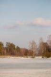亚历克西斯池塘在春天 免版税库存图片
