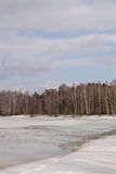 亚历克西斯池塘在春天 库存图片
