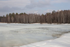 亚历克西斯池塘在春天 免版税库存照片