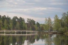 亚历克西斯池塘 免版税库存图片
