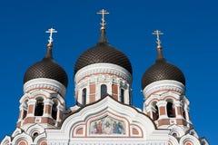 亚历山大大教堂爱沙尼亚nevsky塔林 库存照片
