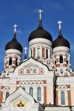亚历山大大教堂nevsky塔林 库存图片