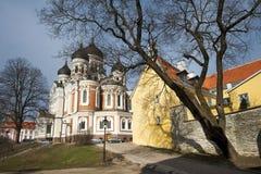 亚历山大・涅夫斯基大教堂在塔林 免版税库存照片